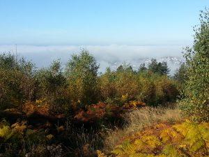 Herbst auf der Hohen Rhonard