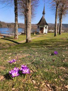 Frühling bei Franz Hitzes Kapelle Foto D. Zeppenfeld